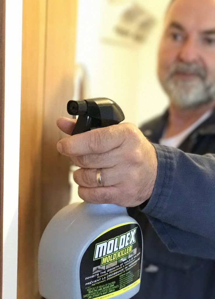 Moldex Spray Professional Painter Magazine