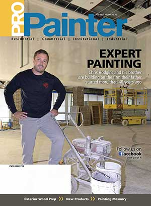 ProPainter Fall 2017