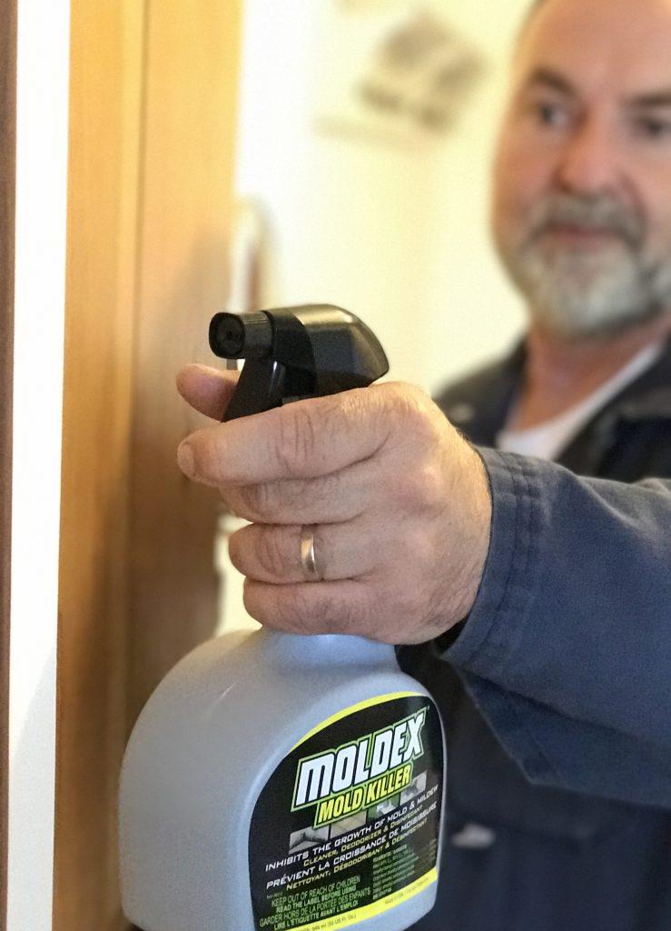 Moldex Spray Professional Painter Magazine